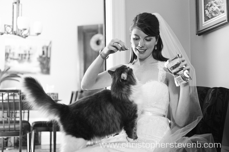 bride feeds treats to cat on wedding day