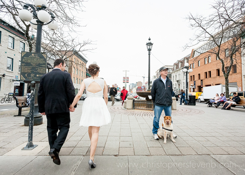 Funny photo of wedding couple walking through the Byward Market with a dog looking at the camera