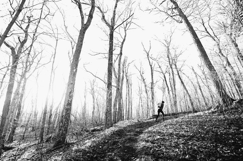 Black / King Mountain trail in Gatineau Park forest in black and white
