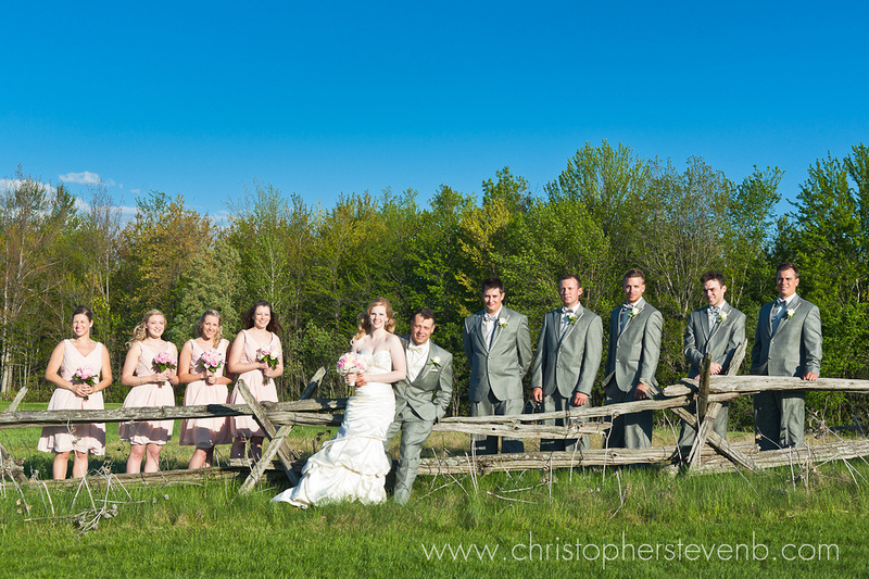 formal of bridal party with bride and groom