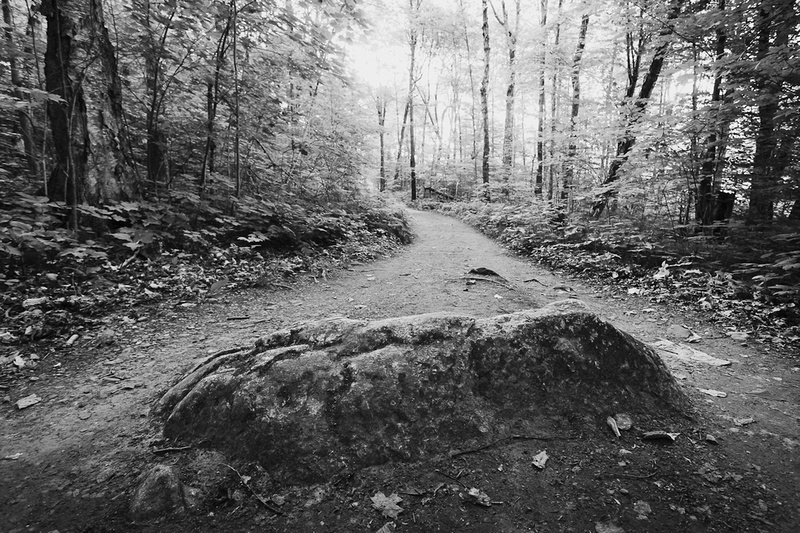 boulder on Gatineau Park trail to Lusk Caves in black and white